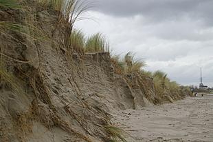 Afgeslagen duinen