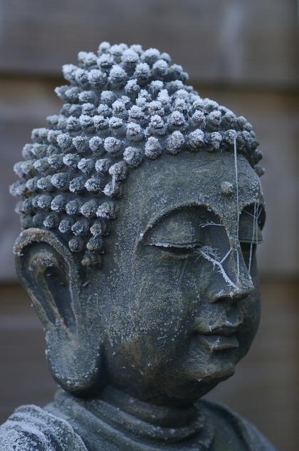 Boeddha met ijskristallen