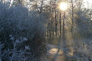 Laaghangende zon laat toch het ijs smelten