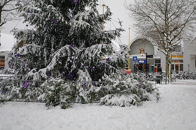 Kerstboom bij het station