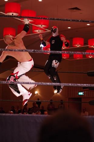 Dutch Pro Wrestling