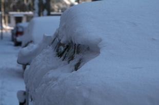 Sneeuwballen gooien?