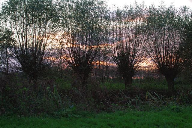 Ondergaande zon; nu wordt het koud...