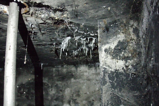 Bunkers_img_8059