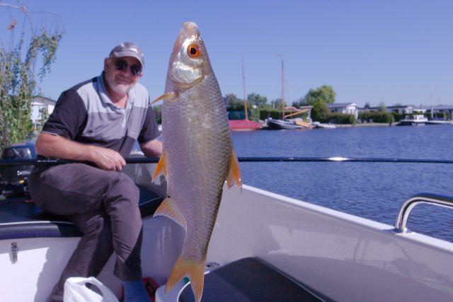 Enorme joekels van vissen